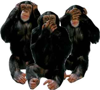Monkeys, See No Evil, Hear No Evil, Speak No Evil.