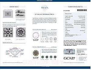 Blue Nile Signature Diamond, #BN220470068