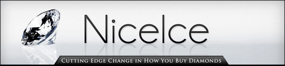 Nice Ice Diamond Concierge Service TM