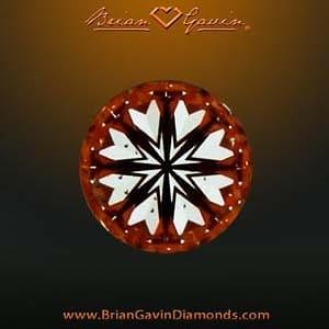 Brian Gavin Signature vs. Ritani 1-carat diamonds.