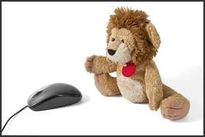 Enchanted Diamond Reviews, Lion Cat playing with mouse