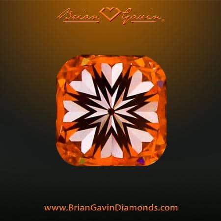 Brian Gavin Signature Ideal Cushion Cut Diamond
