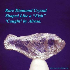 Fish-shaped diamond crystal.