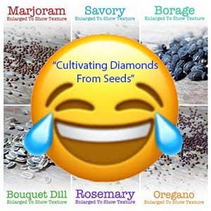 Cultivating Diamonds Seeds