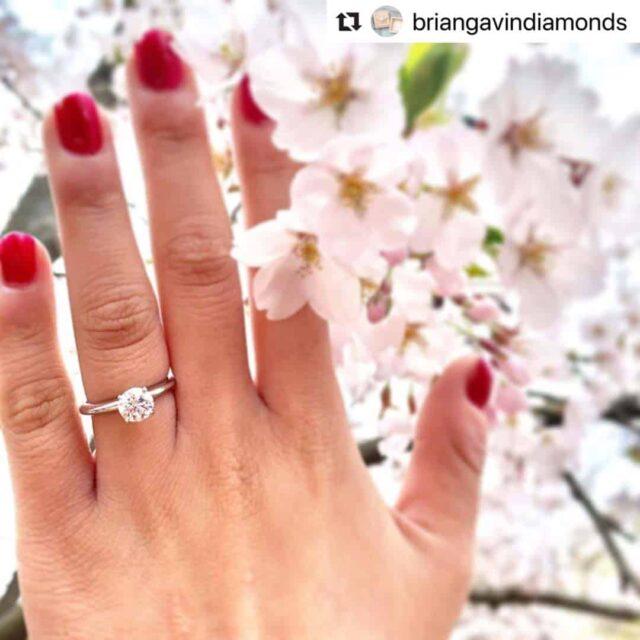 Brian Gavin Signature 1 carat diamond ring