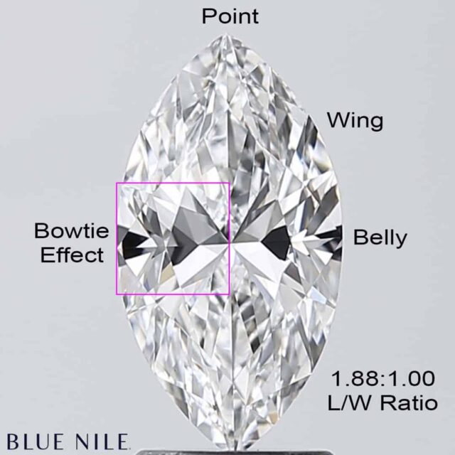 Marquise Cut Diamond Anatomy