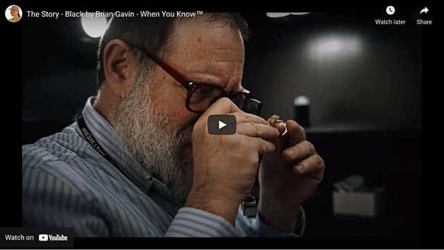 The Black By Brian Gavin Story YouTube Video.