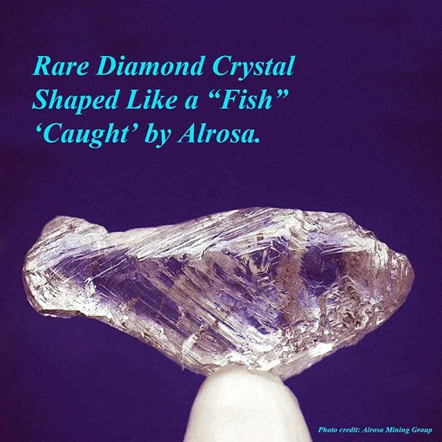 Rare Fish-shaped Rough Diamond Crystal from Alrosa Mining Group, Russia.